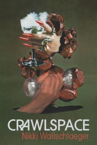 crawlspace_cover3